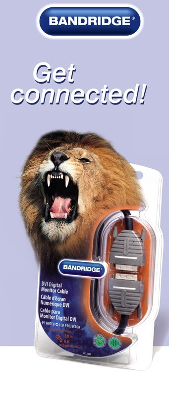 lion bandridge it