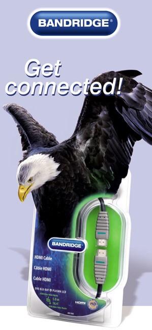 video eagle bandridge